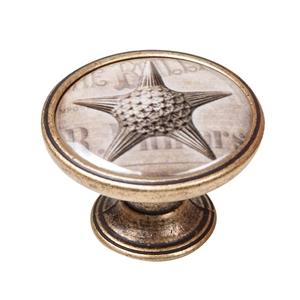 pomo mueble vintage bronce viejo estrella mar 550br57