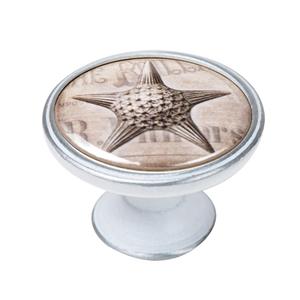 pomo mueble vintage plata con patina blanca estrella mar 550pb57