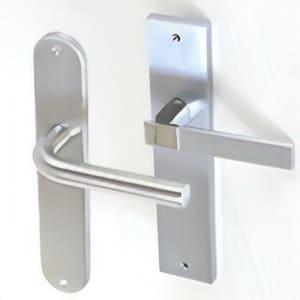 Handle door with plate